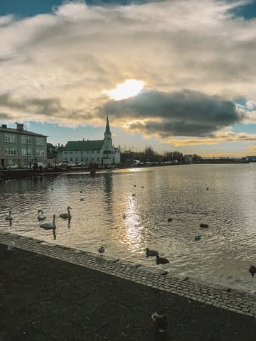 Tjörnin with buildings and church in the background in Reykjavik.
