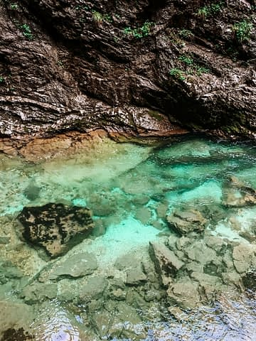 Different shades of green and rock at Vintgar gorge near Lake Bled